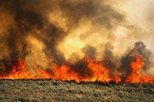 Brush Fire Along I-84