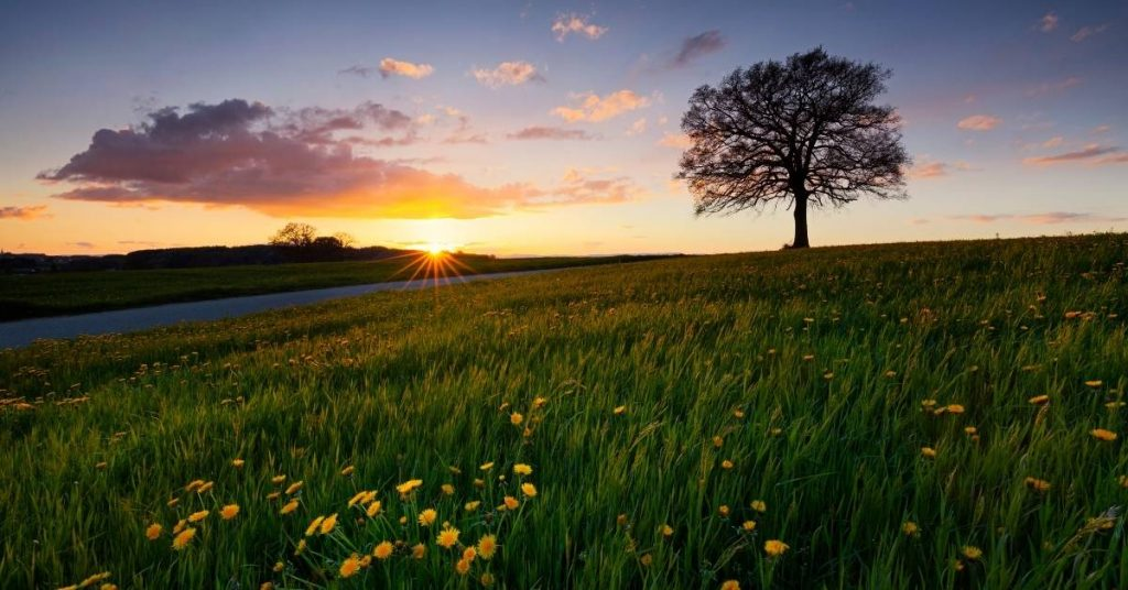 Day's Dawning – Whispers from God | focuswithmarlene.com
